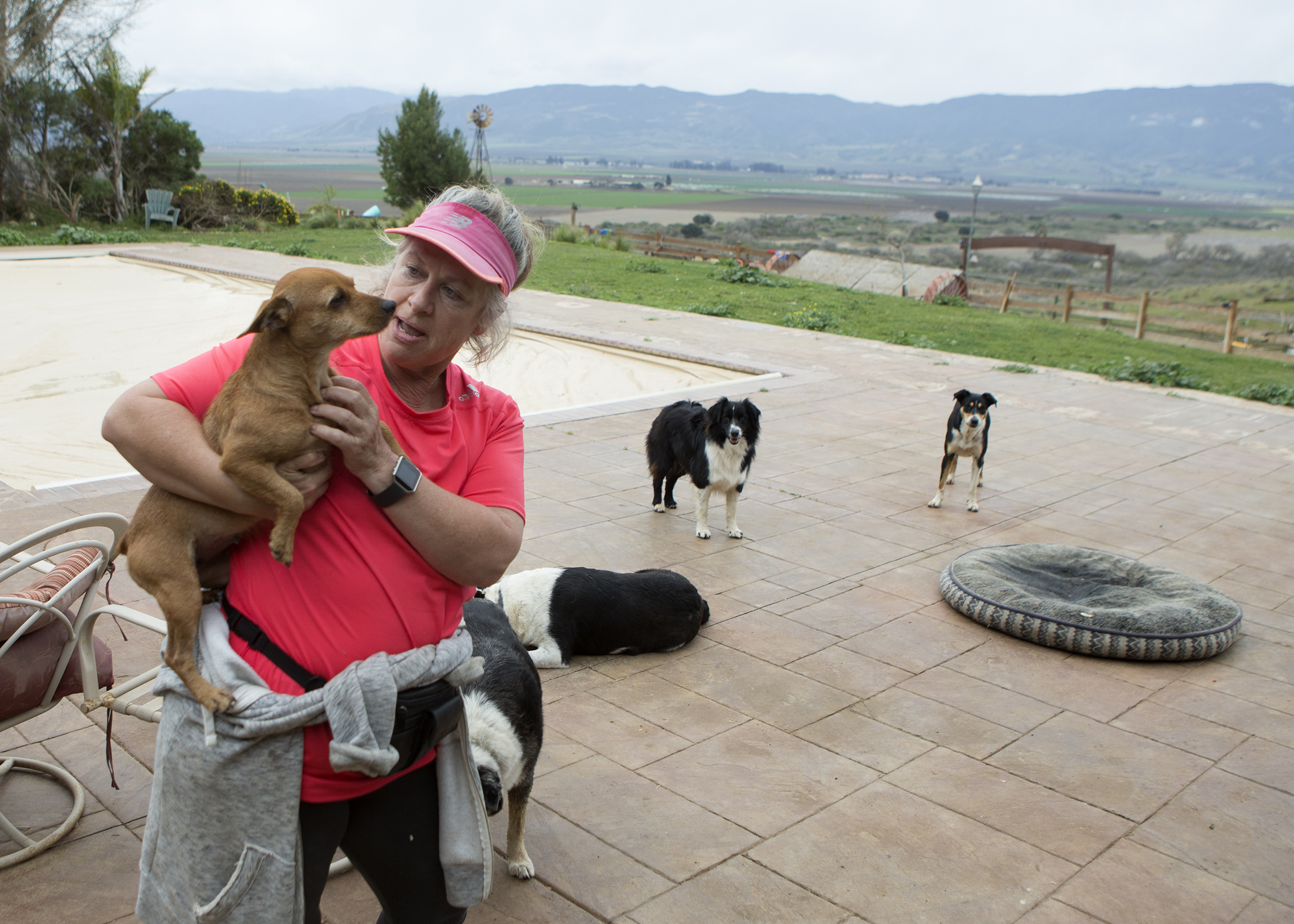 Animal-Rescue-Vomb-031318_1a