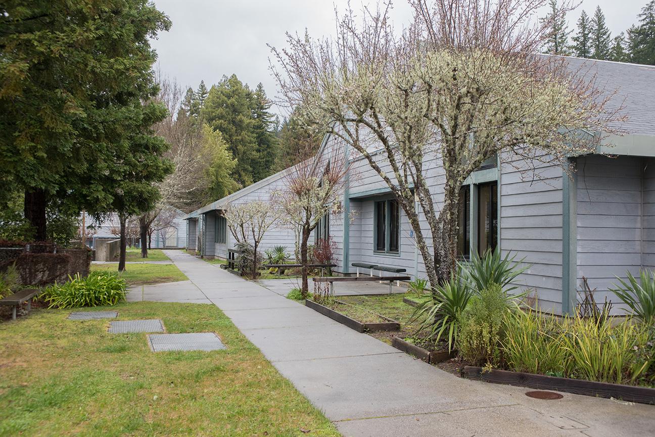 Redwood-Elementary042