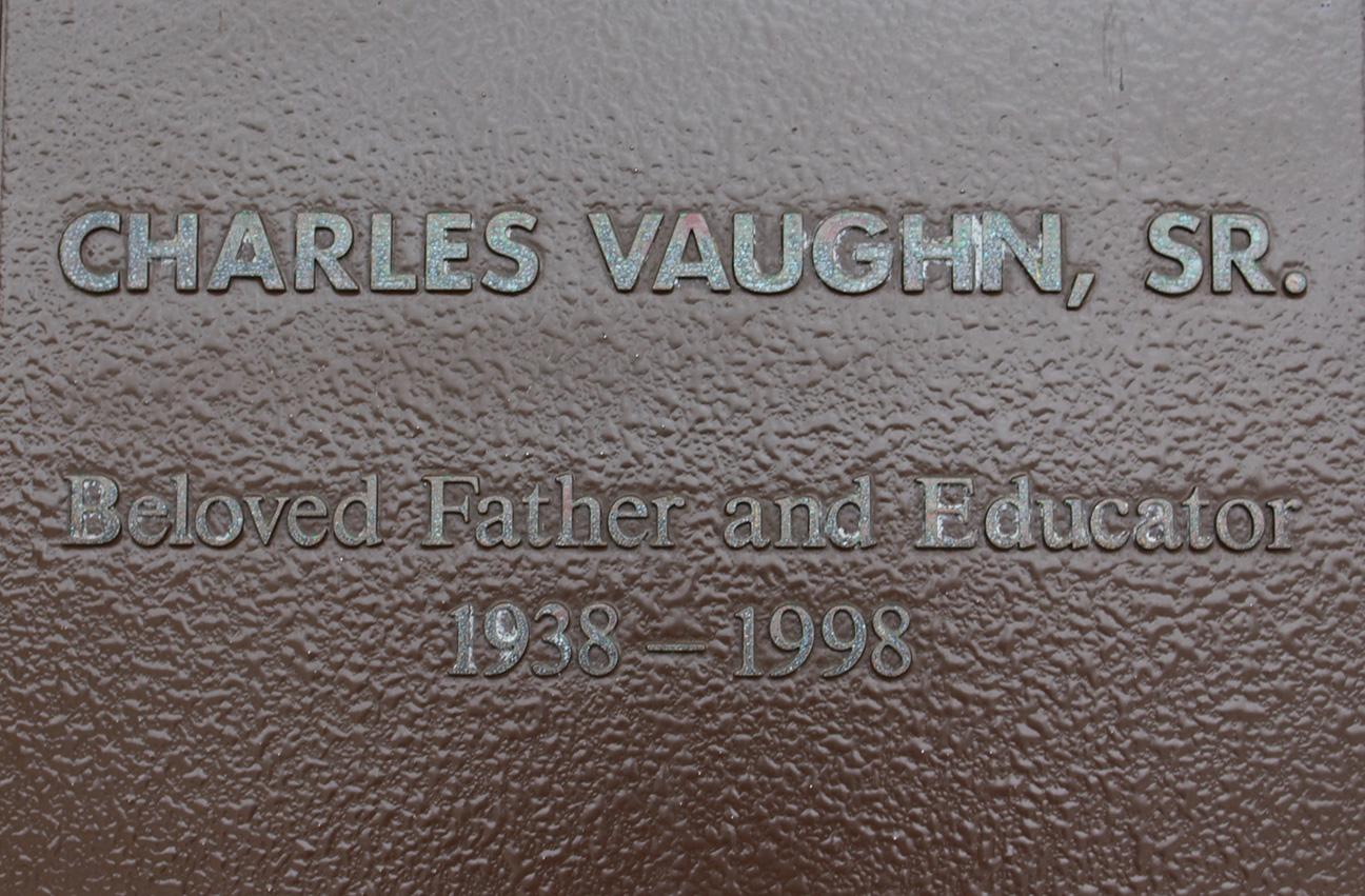 Vaughn2