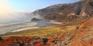 "<span class=""entry-title-primary"">Big Sur's STR Problem</span> <span class=""entry-subtitle"">South Coast is too wild for short-term rentals</span>"
