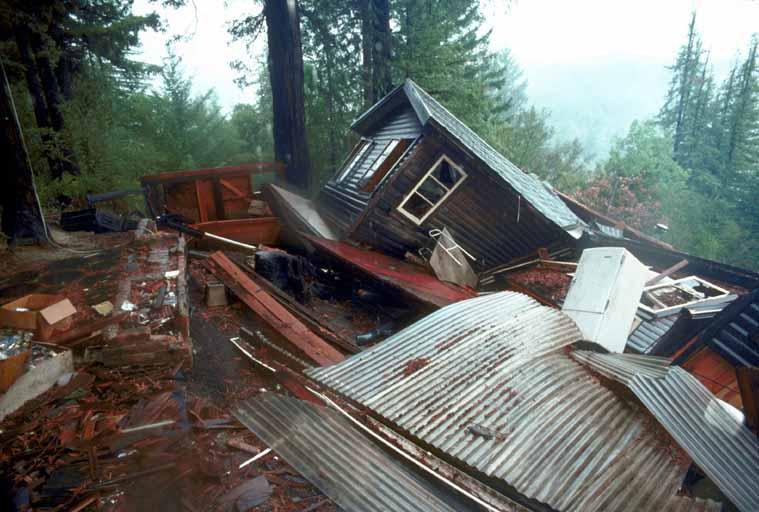 Redwood-Grove-earthquake