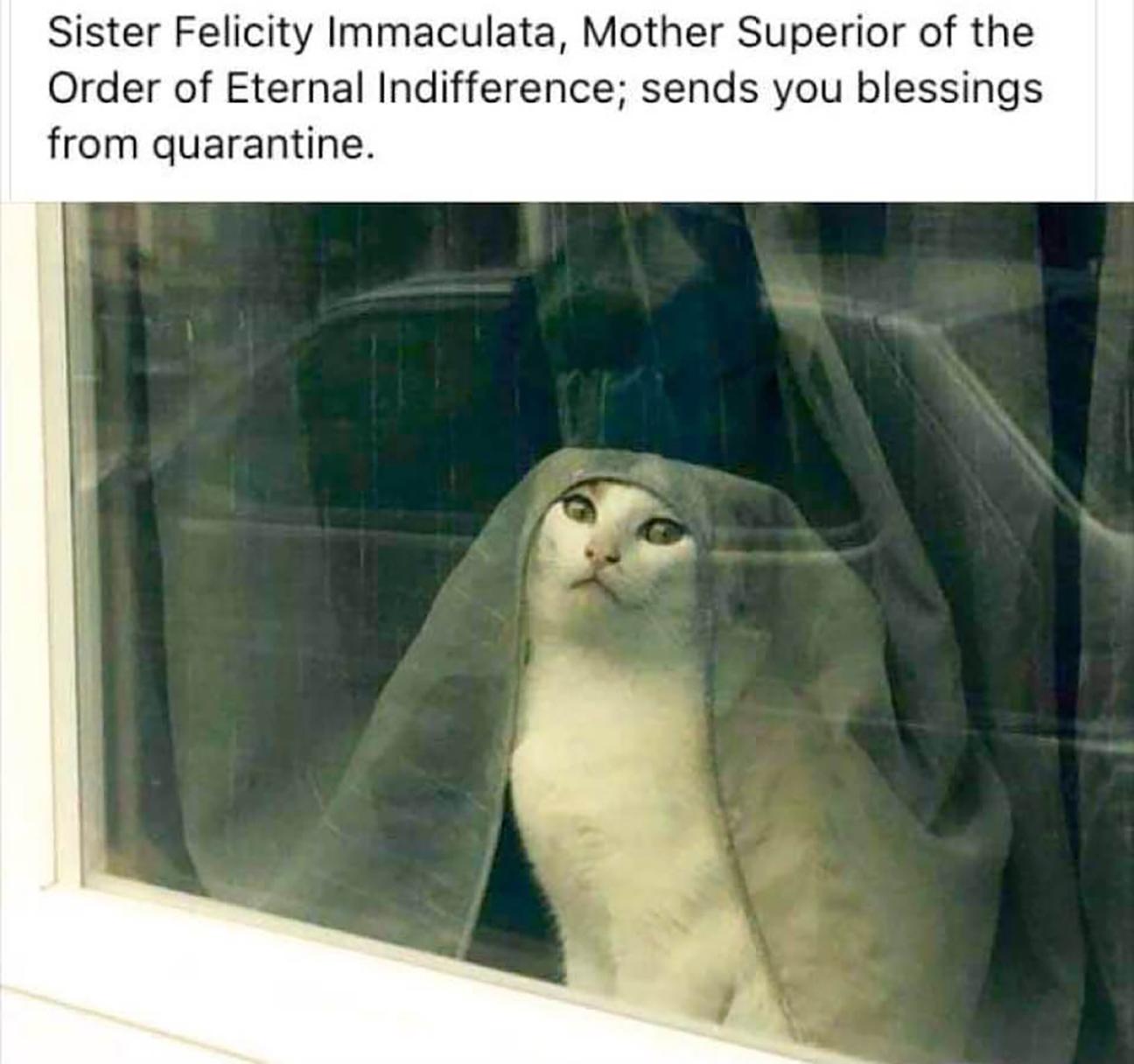 sister-felicity-1