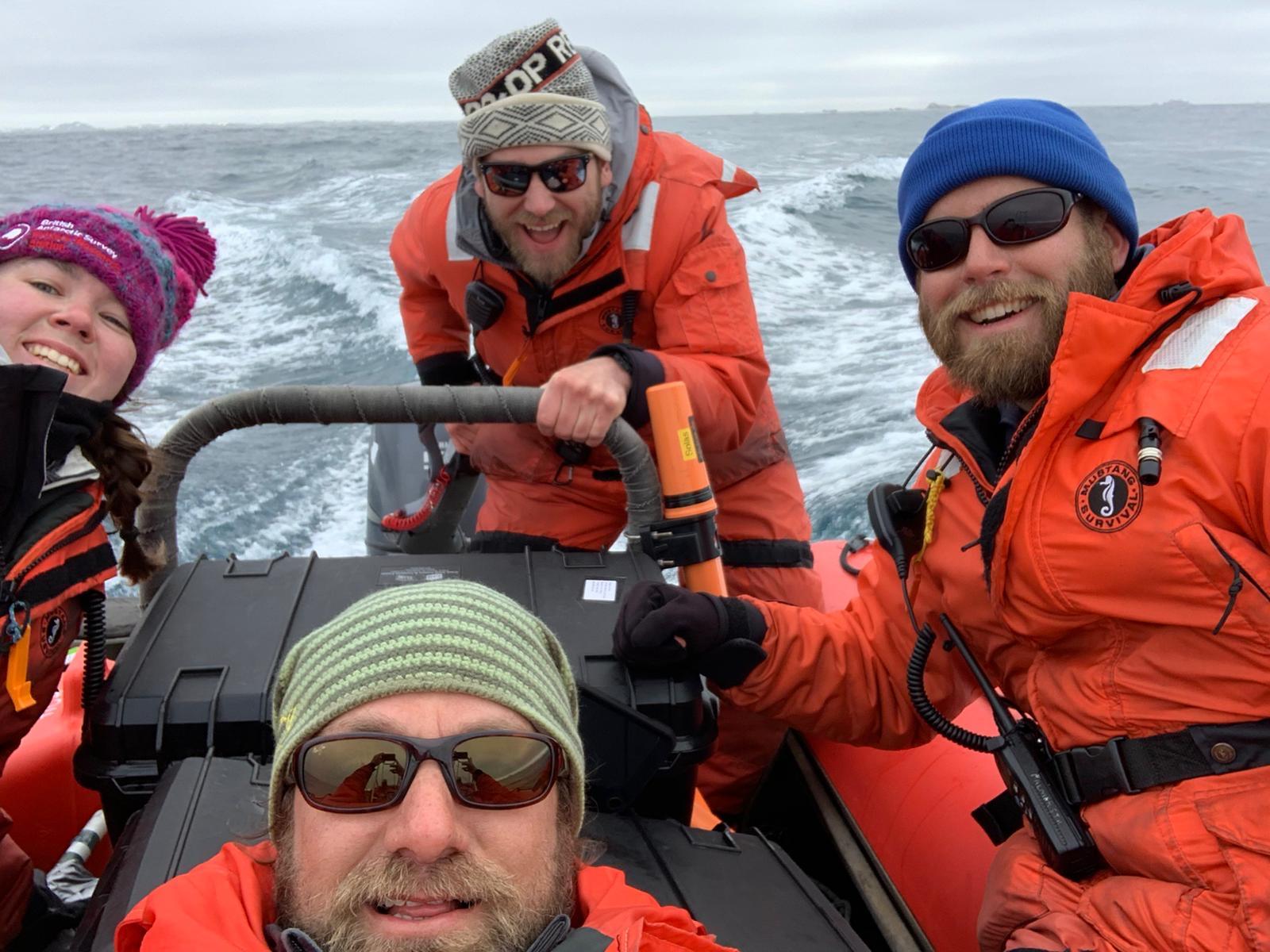 whale-team