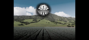"""<span class=""""entry-title-primary"""">Election 2020 Interviews: Wendy Root Askew, Candidate for Monterey County Board of Supervisors</span> <span class=""""entry-subtitle"""">Salinas Underground Podcast</span>"""